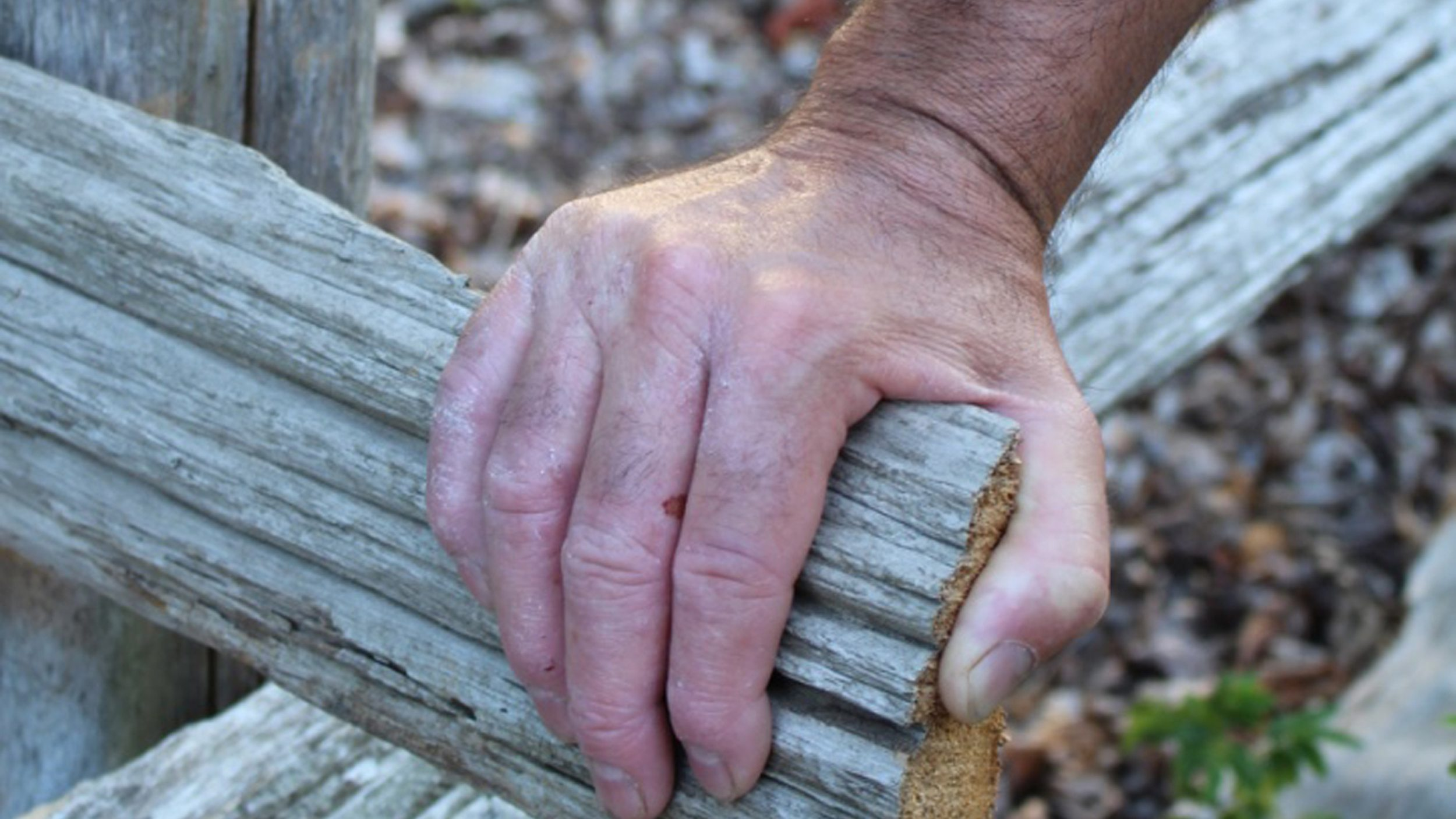 A man's hand holding onto a wooden fence