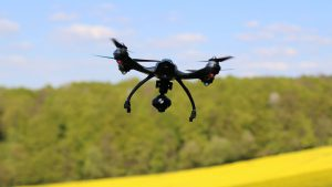 A drone flies over canola