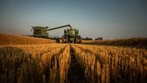 A combine unloads wheat into a wagon hauled by a tractor